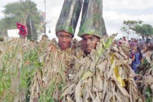 Carnaval de Cotuí en peligro, según munícipes