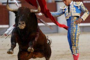 Un toro mata a torero frente a miles espectadores