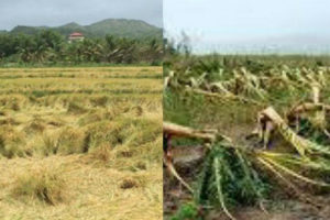 Ex director del Indrhi y dirigente del PRSC aboga por solución de inundaciones y sequía en Línea Noroeste